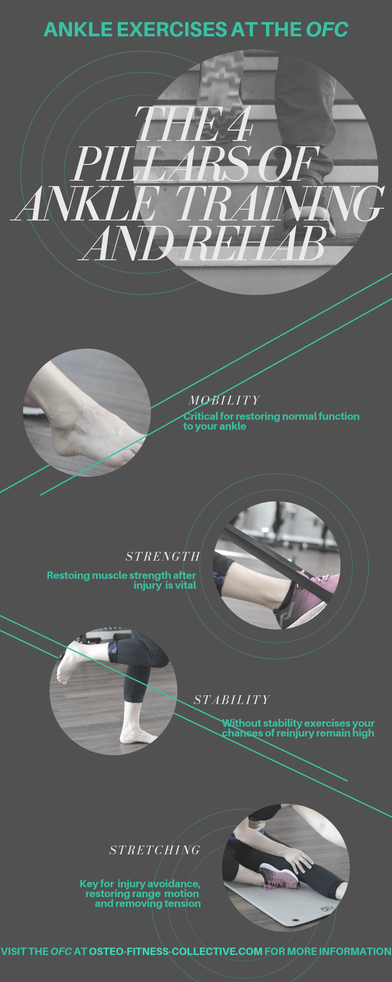 Ankle rehabilitaton infographic