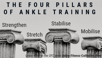 ankle mobility exercise infographic